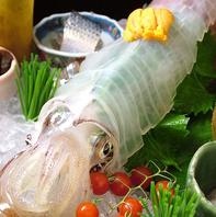 産地直送の鮮度抜群の海鮮は絶品♪熊本で魚なら酒湊