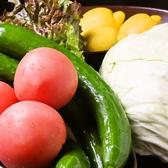 安心・安全の野菜を季節によって仕入れます