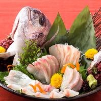 贅沢!!【鯛の姿造り】が+500円で追加可能。