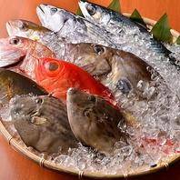 ~ とにかく旨い魚をお客様に届けたい ~