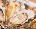 料理メニュー写真本日の産直フレッシュ・オイスター(生牡蠣)