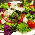 料理メニュー写真アースサラダ
