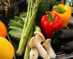 契約農家より直送された新鮮なお野菜を使用。 新鮮で安心・安全な素材の味をお楽しみください。