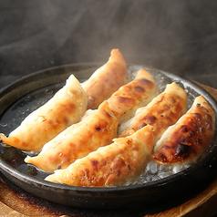鉄板 肉汁餃子/鉄板 台湾餃子/鉄板 鶏餃子 各種