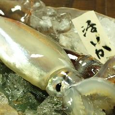 北海道まるごとダイニング うまいっしょ!のおすすめ料理1