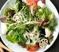 料理メニュー写真10品目のクールジャパンサラダ