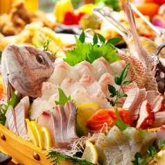 旬の鮮魚菜とうまいもん 天菜 三宮店の特集写真