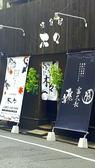 木々 広島 のこのこの写真