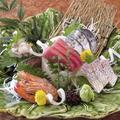 料理メニュー写真特上刺身五種盛り合わせ