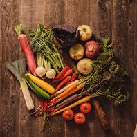 朝採れ野菜のバーニャカウダ