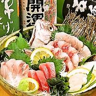 漁港から美味い魚介を直送!リーズナブルな鮮魚一品料理