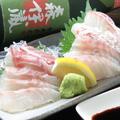 料理メニュー写真鯛のお刺身