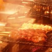 阿波尾鶏も使用!こだわりの串焼き。