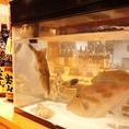 【店内にある水槽では、鮮魚が泳ぐ!】