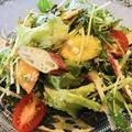 料理メニュー写真鎌倉野菜のシンプルサラダ