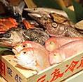 新鮮な直送鮮魚が奥志摩のウリ!毎日、三重県伊勢志摩から鮮度抜群の旨い魚を仕入れているので、季節に合わせたその時一番美味しい魚をお楽しみいただけます。直送の旨い魚と郷土料理の数々をぜひご賞味ください。本日のお刺身・オススメ等もございますので、お気軽にお尋ね下さい。