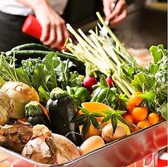 dining Tanpopo ダイニング タンポポの特集写真