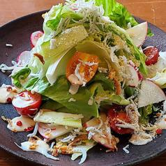 淡路島レタスとしらすたっぷりシーザーサラダ