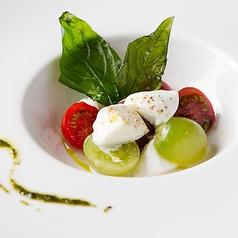 厳選農園の4種のトマトとモッツアレラ'ブッファラ'のカプレーゼ
