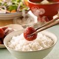 料理メニュー写真福井県の美味しいお米の白ご飯(味噌汁 漬物付)