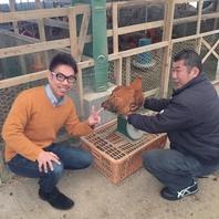 鶏は全てスタッフが目で見て話を聞いて厳選しております