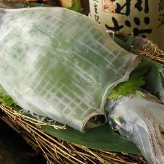 すし 魚游 伊勢佐木モール店のおすすめ料理1