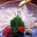 料理メニュー写真白身魚の薄造り~新宿 個室居酒屋 新宿宮川 野村ビル店~