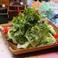 料理メニュー写真パクチー香るサラダ