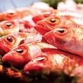 【新潟の味 高級魚のどぐろ】正式名称は「赤むつ」。喉の奥が黒いことから新潟・北陸地方では「のどぐろ」と呼ばれている高級魚。白身のトロと称されるように、脂がのっており炭火焼きでその濃厚な味わいをお楽しみくださいませ。