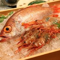 全国の漁港から届く新鮮な魚を代官山でお楽しみください