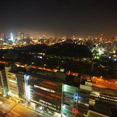 こんなにキレイな夜景を一人占めできます!