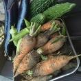 【お野菜も新鮮がイチバン】体から美味しいと思えるお野菜たち。素材からこだわりをお伝えします
