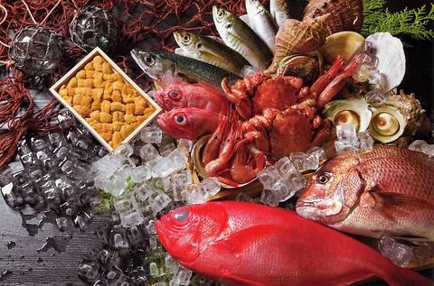 季節を感じられる旬の料理を多数ご用意◎飲み放題付コースは5000円(税込)~!