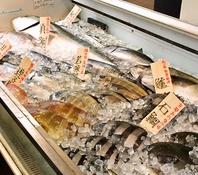 コースも単品も北陸から仕入れる天然鮮魚が盛りだくさん