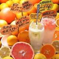 神奈川生まれの黄色いオレンジ【湘南ゴールド☆】