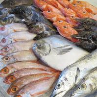 種類豊富なお魚をご賞味ください