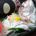 料理メニュー写真天然桜鯛の姿造り