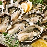 美味しくジューシー!ニュージーランド産活〆牡蠣♪