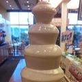 料理メニュー写真ホワイトチョコファウンテン