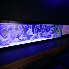 水槽のカラフルな魚を見ながらお楽しみ頂けるカウンター。まるで海の中でお食事を楽しんでいるかのような雰囲気です♪