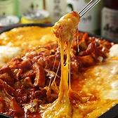 チーズタッカルビ&韓国家庭料理 土房 神田のおすすめ料理2