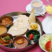 インドネパール料理 エベレストカレーハウスの詳細
