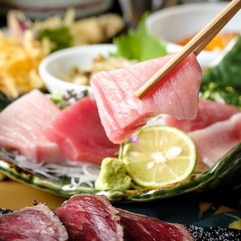 【有楽町居酒屋】新鮮な鮪付き飲み放題コースは2,500円(税込)より! 銀座インズ店