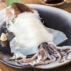 料理メニュー写真【特選】北海道のイカ刺し【数量限定】