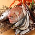 早朝の水揚げ。鮮度が命!時間との戦い。すばやく市場に運び、魚種を仕分けます。