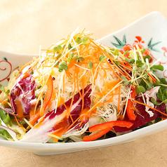 料理メニュー写真12種の新鮮野菜サラダ