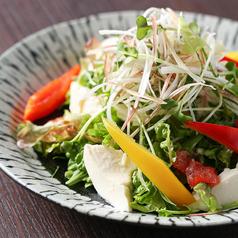 香味野菜と豆腐サラダ(トリュフ風味)