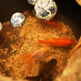 可愛い金魚がお出迎え♪~新宿 個室居酒屋 新宿宮川 野村ビル店~☆新宿 個室 居酒屋 宴会 接待