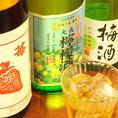いちごや瀬戸内レモン、紀州南高梅など果実酒も珍しいものが愉しめる。お酒が苦手な人でも興味が湧くかも。