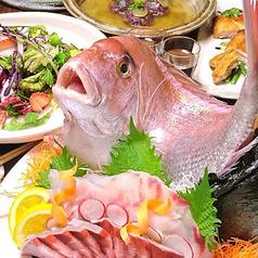 居酒屋Dyning 東風のおすすめ料理1